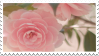 https://omfg.neocities.org/imgs/pink_rose_stamp_by_namelessstamps-da6a5ps.png